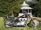 Used 2001 Harley-Davidson&reg; Softail&reg; Standard