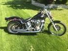 Used 1984 Harley-Davidson® Softail®