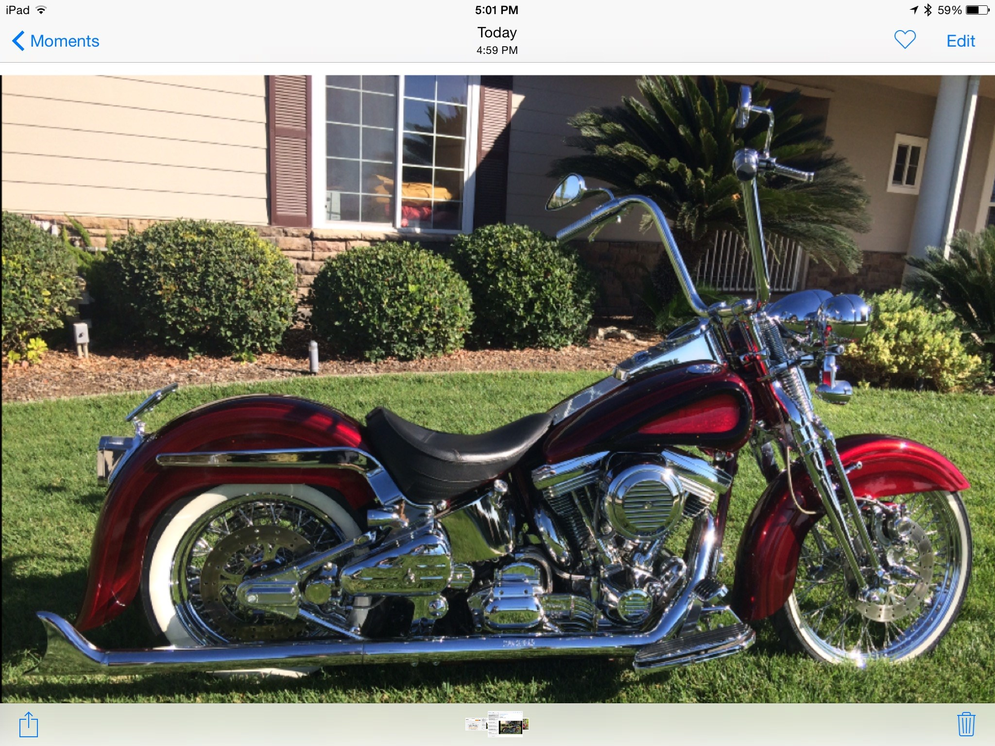 1999 Harley Davidson 174 Fxstc Softail 174 Custom Brandy Wine