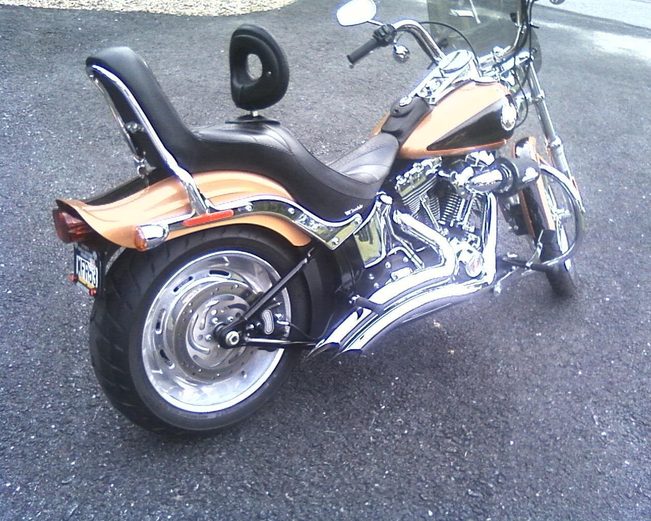 Copper Derby Cover : Harley davidson fxstc softail custom two tone