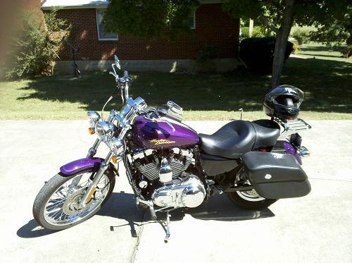 Used Motorcycles Nj >> 2008 Harley-Davidson® XL1200C Sportster® 1200 Custom (Purple Haze (limited edition color ...