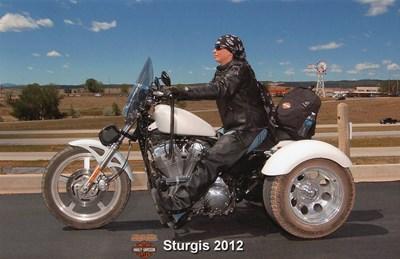 Used 2008 Harley-Davidson® Custom Trike