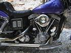 Photo of a 1973 Harley-Davidson® FX Super Glide®
