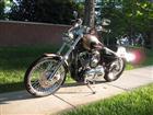 Photo of a 2005 Harley-Davidson® XL1200C Sportster® 1200 Custom